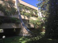 Appartamento quadrilocale ristrutturato